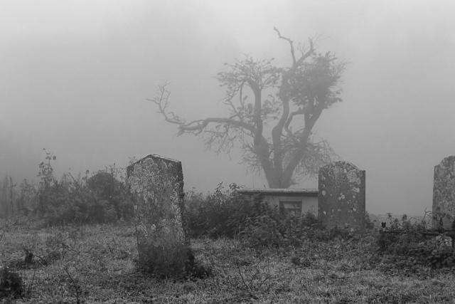 Misty Graveyard.jpg