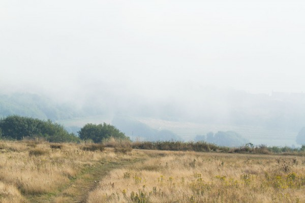 Mist over Sheepcote Valley