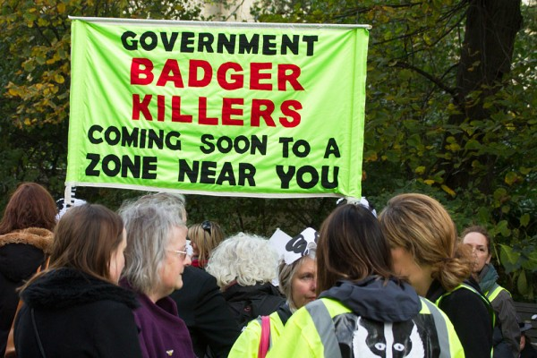 Protesters at the Brighton Stop the Badger Cull March,