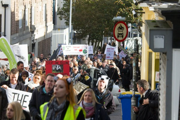 Protesters at the Brighton Stop the Badger Cull March