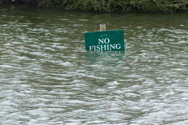 No Fishing sign in flooded pond at Falmer