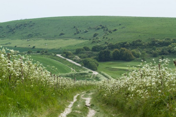 Path from Sheepcote Valley to Ovingdean